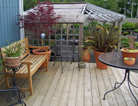 Back deck at nursery